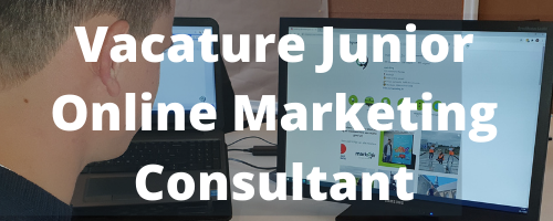 junior online marketing consultant